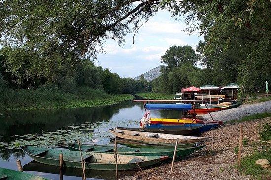 Excursão ao lago Skadar com acomodação