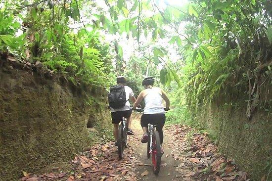 ロンボク島からのマウンテンバイクと滝のツアー