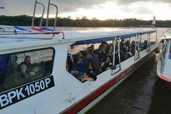 Tour en bateau scintillant de Kuala...