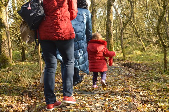 Lanark, UK: Find the hidden treasures and collect stickers to become a Qualified Nature Sleuth