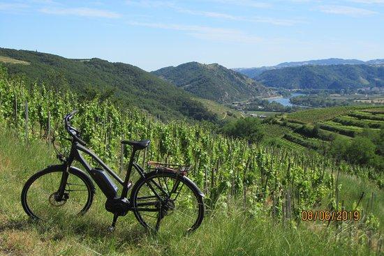 Stations Bee's Tournon-sur-Rhone - Location vélos électriques
