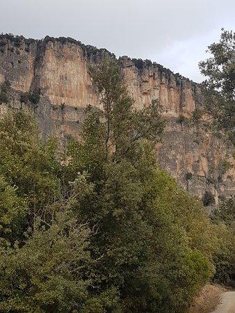 Foresta di Montarbu