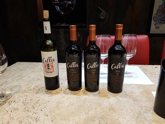 Degustación de vinos CALLIA.