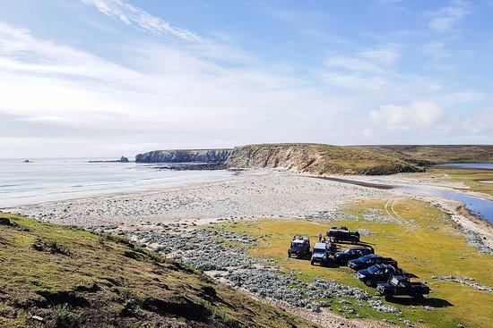 East Falkland Photo