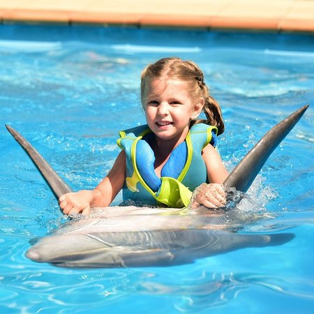 ❤️ Keep calm and swim with dolphins!