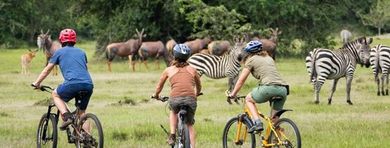 Cycling in Lake Mburo national Park... Book your next trip with us and enjoy this adventure..
