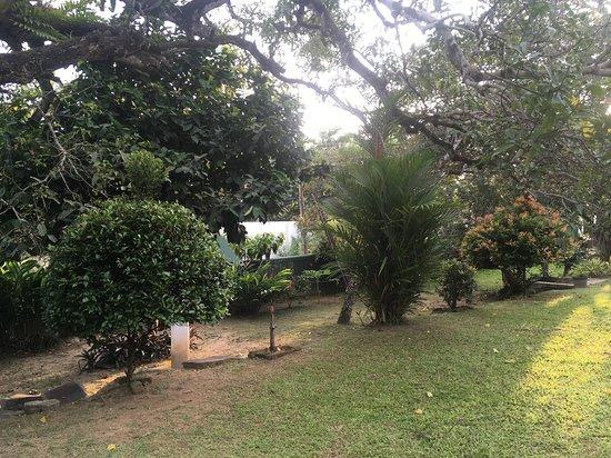 Сад на вилле