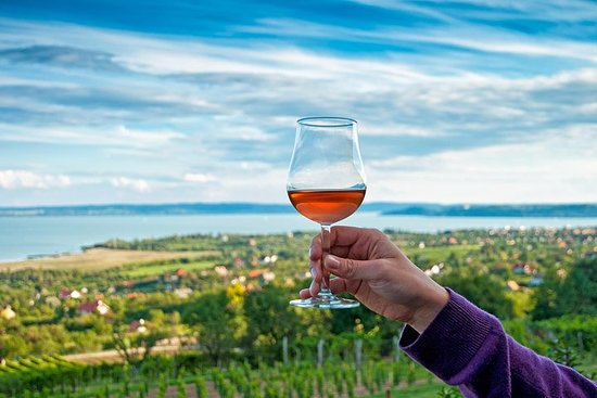 Visite privée des vins du lac Balaton