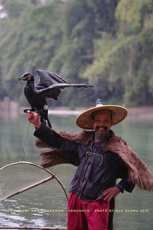 Jerry's guide & driver service: Fisherman and Cormorant - Yangshuo