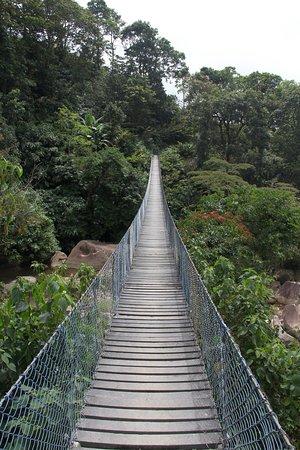Tamesis, Kolumbien: Puente sobre el rio frío, vereda el hacha