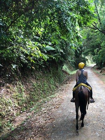 Horseback Riding Tour from Manuel Antonio – obrázok