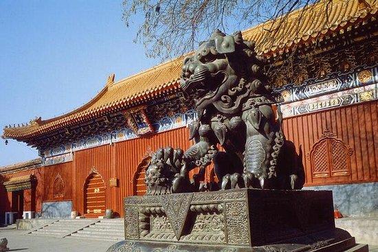 Foto de Excursión de un día al antiguo Beijing y al Estadio Olímpico