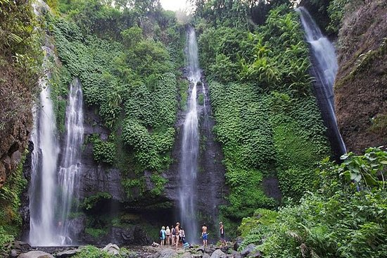 Sekumpul Waterfall Tour - One Day...