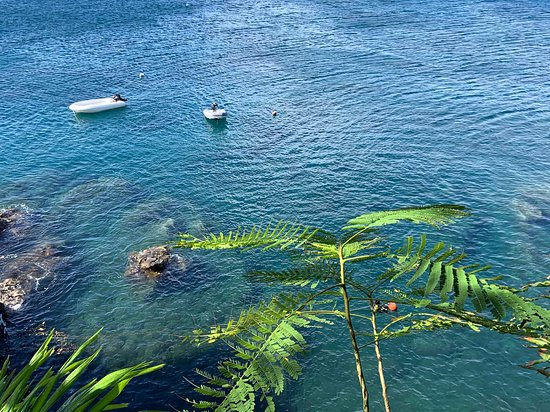 Guadeloupe: Pause café avant plongée :)
