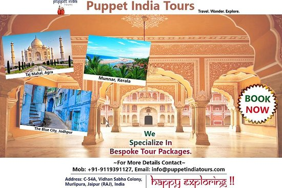 Puppet India Tours