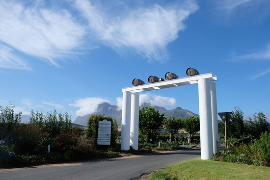 Paarl, Afrique du Sud : Backsberg has been in the Back family for four generations. The fifth-generation Back joined the family in 2019 (hence the tiny barrel at our entrance).