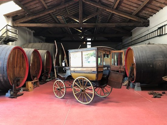 San Pietro in Casale, Italien: RED WINE PRODUCER