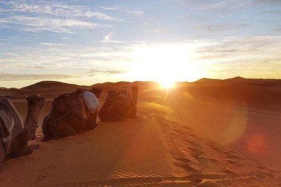 Fes Morocco Trips