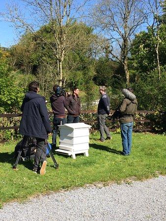 Cross Inn, UK: BBC film crew from 'Eat well for less'
