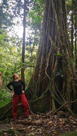 Svatá Lucie: Enjoy nature