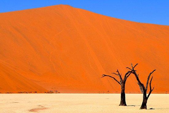 Namibia Adventure Travel Agency