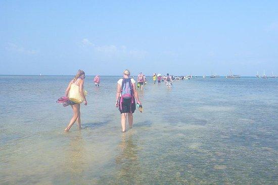 Kwale Island Dhow-Segeltour von...