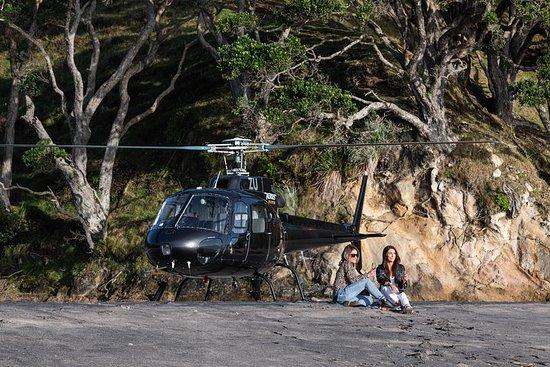 Coromandel Coast og Beach Landing Helicopter Flight fra Tauranga