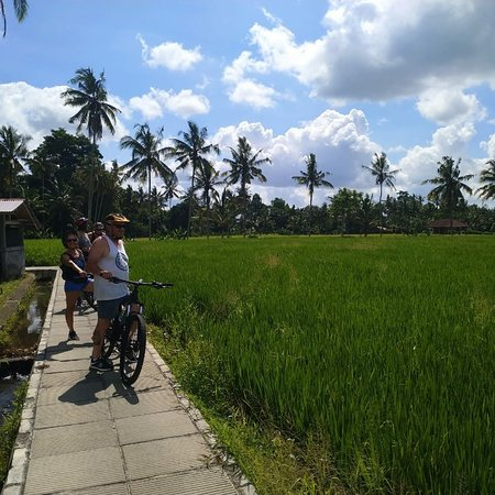 Bali, Indonesia: Anyone keen to do bike ride? Please send a msge for more information