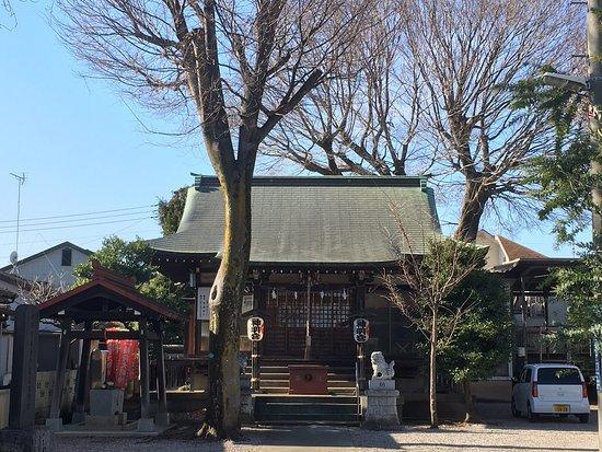 Maehara Maehara Shinmeigu