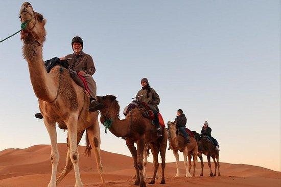 3-Tageswütetour von Marrakesch nach...