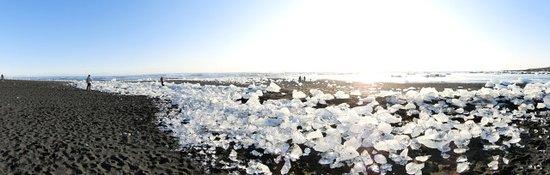 黒い砂浜一面に広がる氷塊