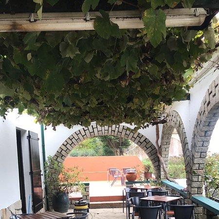 Carreco, Португалия: AMMAROS 47