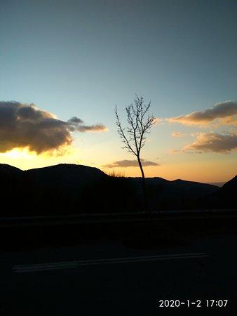 Arkadia Region, Yunanistan: Tree and sunset