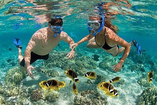 Snorkeling Tour at Hon Mun Island...