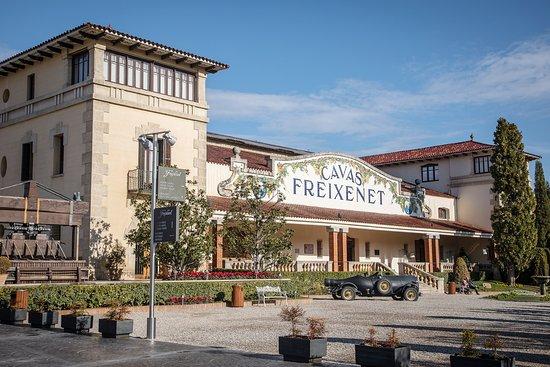 Sant Sadurni d'Anoia, Španělsko: Entrada principal de visitas.