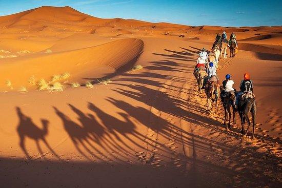 Marrakesch nach Fes über die Wüste...