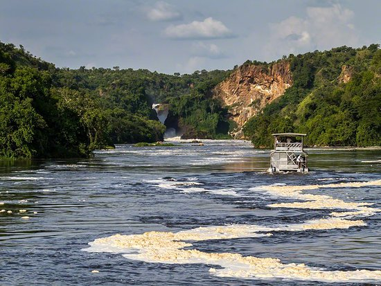 Национальный парк Марчисон-Фолз, Уганда: Book your trip now.......this is one of the best launch cruises you can ever get on the RIVER NILE