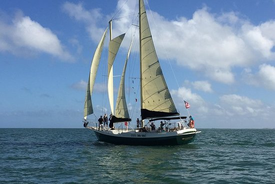 2 Hour Day Sailing Cruise Clearwater Beach