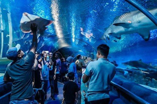 Billet d'entrée Aquaria KLCC
