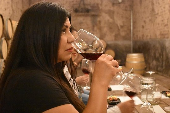 Vineyard and Mexican wine tour, guided tasting