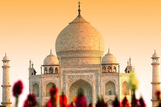 Full Day Private Day tour to Agra from Delhi with lunch Resmi
