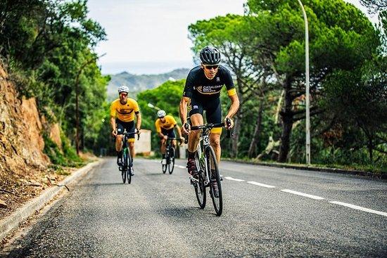 Girona Charming Region Private Bike Tour