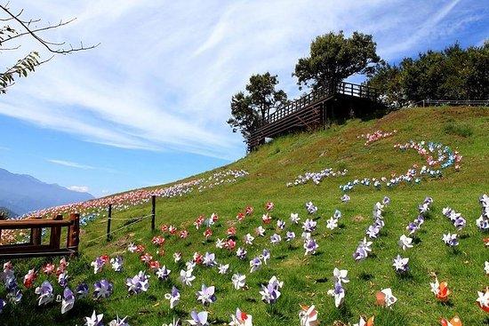 Nantou Qingjing Farm Green Green Grassland and Small Swiss Garden...