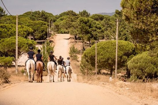 Tour dell'Alentejo con pranzo e passeggiata a cavallo sulla spiaggia
