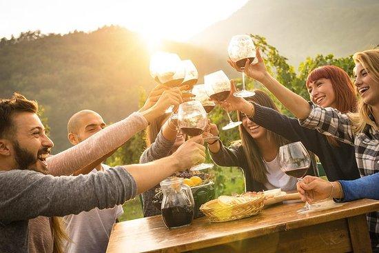 Oplev Mendocino vin og redwoods 1-dages...