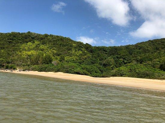 Cardoso Beach