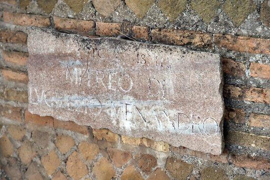 Photos de Pink Umbrella Ostia Tours - Photos de Ostia Antica - Tripadvisor