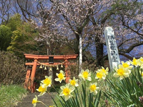 Izu Gongen Shrine