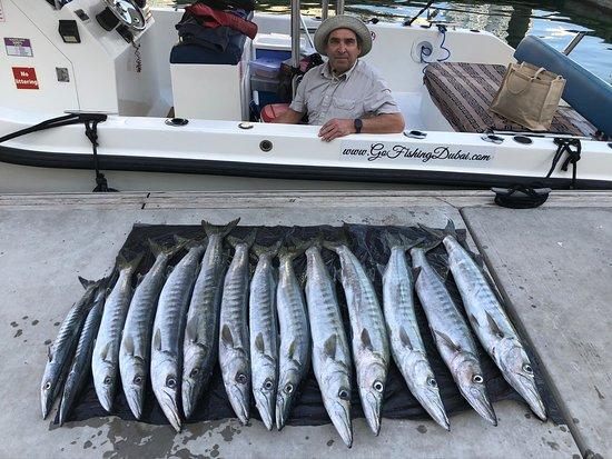 Gehen Sie angeln Dubai 5 Stunden Trolling & Regular Fishing: A few Barracudas