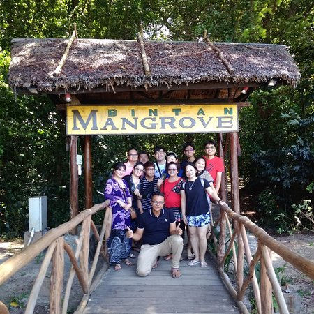 Bintan taxi Adventure Mangrove river tour  Bintan islands indonesia